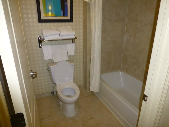 Homewood Suites by Hilton Lake Buena Vista-Orlando: bathroom