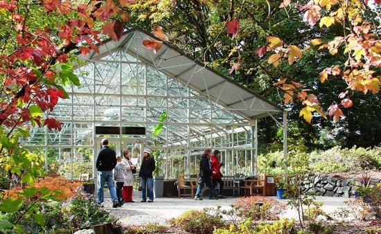 Etonnant Rhododendron Species Botanical Garden