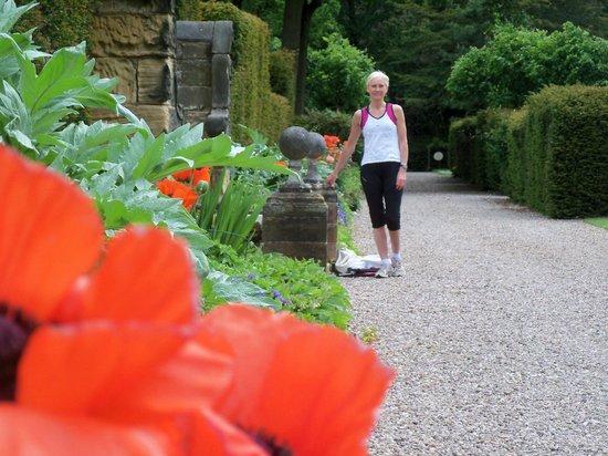 Hoar Cross Hall Spa Hotel: Stunning gardens