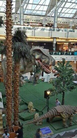 Red Sea Mall: الردسي كما كان يبدو امس .