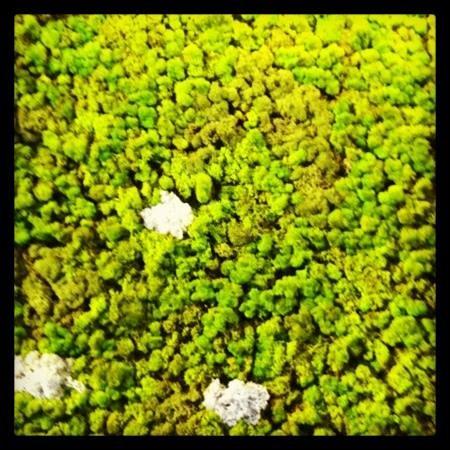 Alltid fint og grønt på Clarion Collection Hotel Hammer