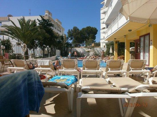 Hotel Tropico Playa: Enclosed pool area & mini bar
