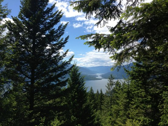 Mountain Trek Fitness Retreat & Health Spa: View from one of the hikes