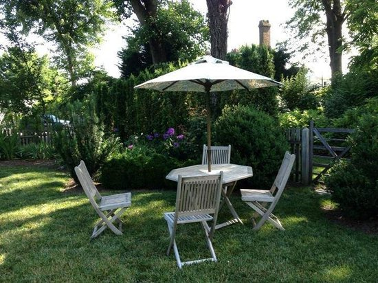 Atherston Hall Bed and Breakfast: Backyard