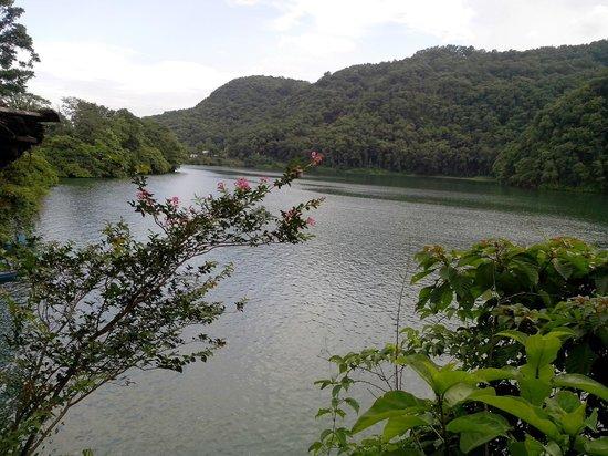 Hotel Lotus Inn: beautiful lake near hotel
