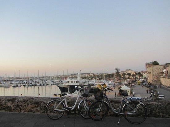 terrazza sul porto - Picture of Cafe Latino, Alghero - TripAdvisor