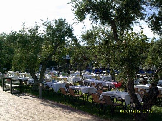Planos Bay Hotel: Olympia site