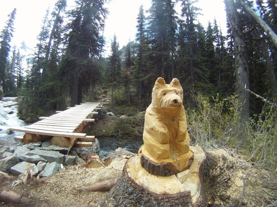 Joffre Lakes Provincial Park : carved bear waiting for hikers on the 'new' trail