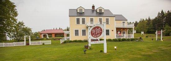 Hotel New Hampshire Bear
