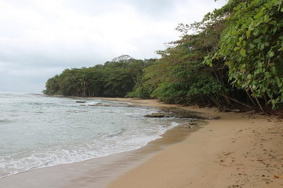 Hotel Shawandha Lodge: Playa Chiquita