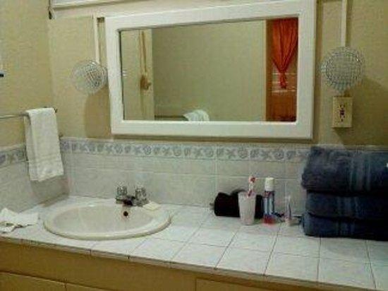 Nautilus Beach Apartments: Washroom