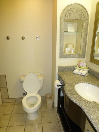 Holiday Inn Express Hotel and Suites: Bathroom with toilet