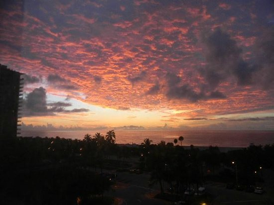 Seagull Hotel Miami Beach: ahh sunrise from my wall of windows