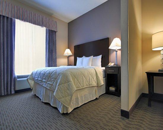 Comfort Inn & Suites Airport: King Suite
