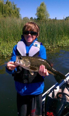 Skylark Shores Resort: Clear Lake Bass