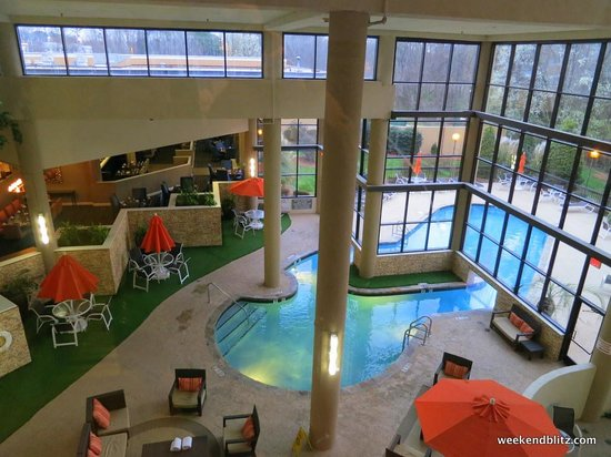 Sheraton Charlotte Airport Hotel: View from elevator of indoor lobby pool