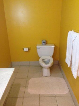 Feather Nest Inn: Bathroom