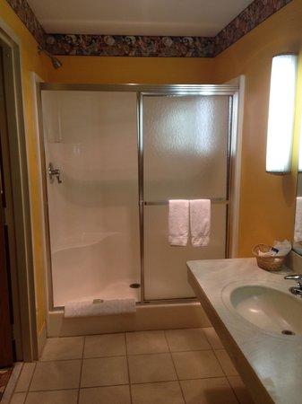 Feather Nest Inn: Shower