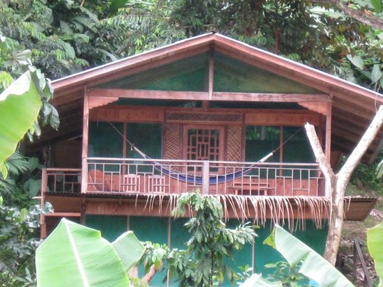 Guaria de Osa Ecolodge: White Hawk Guest Cabin