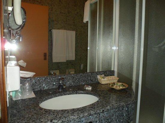 Hotel Royal Torino : bagno
