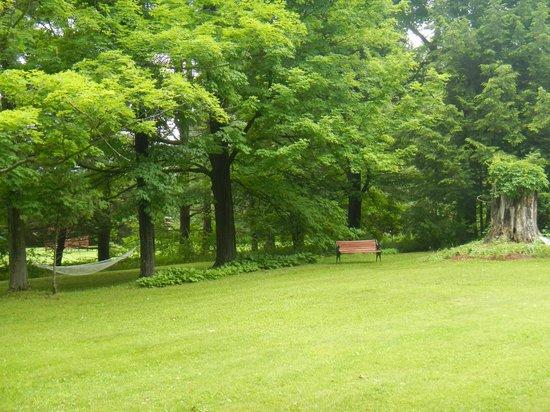The Pratt Smith House: Outside Pratt House- a nice hammock for your enjoyment