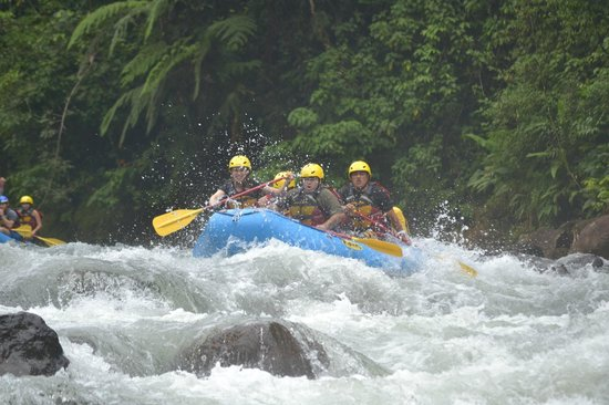Blue River Hot Springs Eco-Adventure Tours : Rafting - White Water Adventure