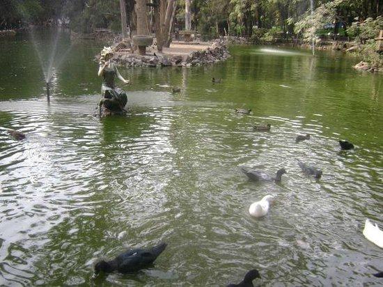 Zoologico Leon