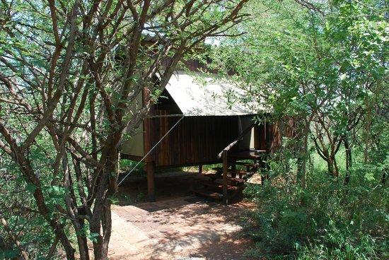 Mosetlha Bush Camp & Eco Lodge: Our hut