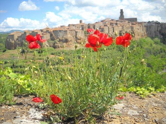 Agriturismo La Meria: Pitigliano