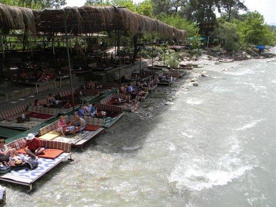 truite élevée dans lea rivière - Picture of Saklikent ...