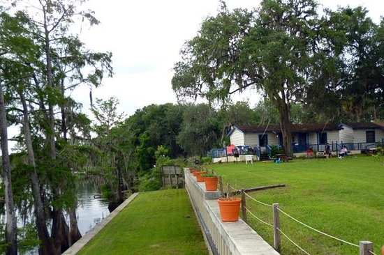 Suwannee Gables Motel and Marina: Suwannee Gables cabins