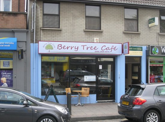 The Berry Tree Cafe: View from over the road.