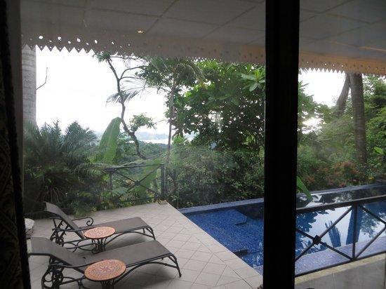 Hotel Villa Caletas: The private pool