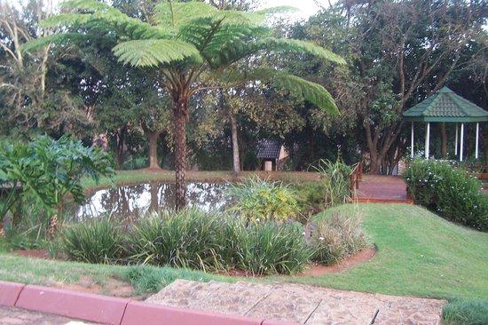 aha Greenway Woods Resort: Lago interno con patos.