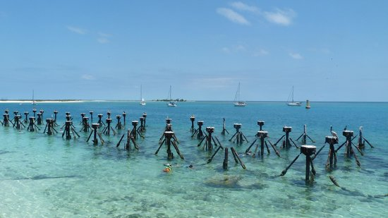 Key West Dry Tortugas Seaplane Day Tours