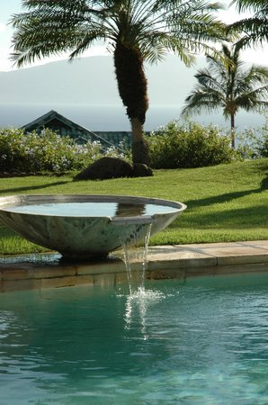 Ho'oilo House : Pool and ocean view
