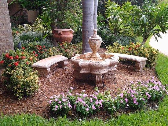 Quality Inn Sarasota/Siesta Key: particolare del giardino