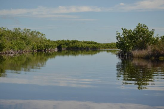 Capt Mitch's - Everglades Private Airboat Tours: Everglades PABT