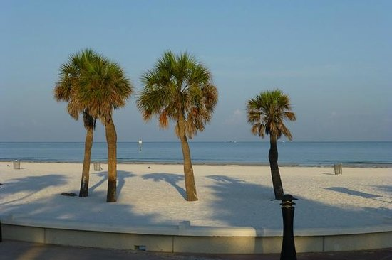 Sands Point Motel: Clearwater Beach