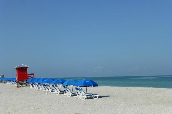 Sands Point Motel: Nearby Sand Key Beach