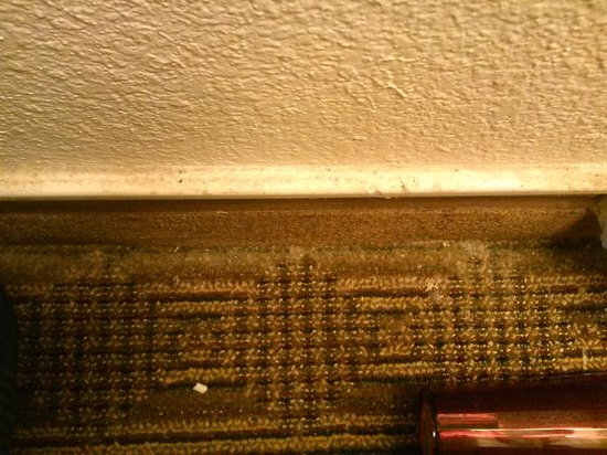 Days Inn & Suites Huntsville: More dirt and mold around room floor