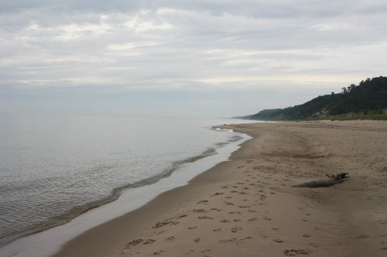 Saugatuck Dunes State Park: lake michigan