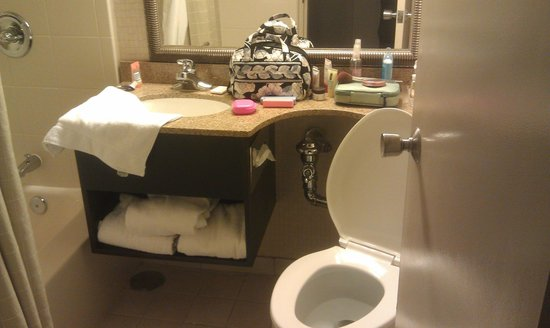 Holiday Inn Syracuse/Liverpool Airport Hotel : TINY BATHROOM!!! Wheres the TP? yep... behind the door!