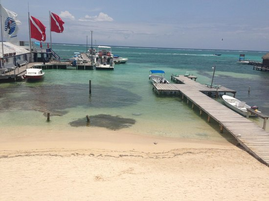 DC & Szana's Country Cabana: View from the Tio Pil's balcony. There's a stingray swimming near shore.