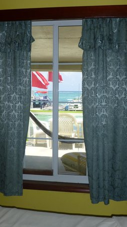 DC & Szana's Country Cabana: View out our window (room #1).