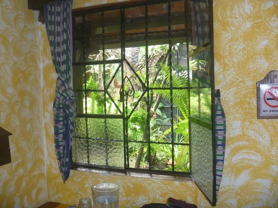 Posada Belen Museo Inn : Vsta al Jardín interno vista desde mi habitación