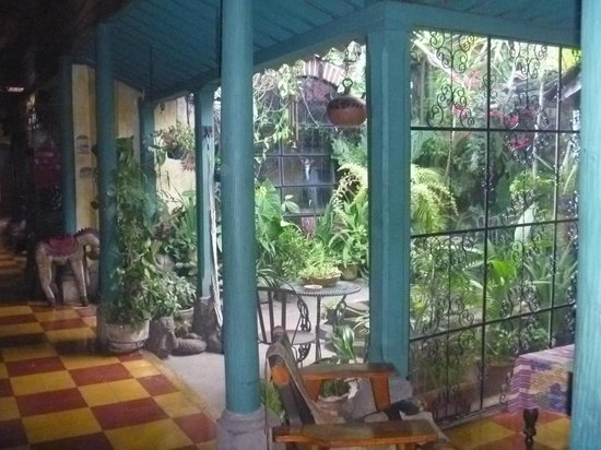 Posada Belen Museo Inn : Jardín interno