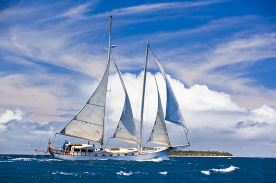 Wayward Wind in Fiji