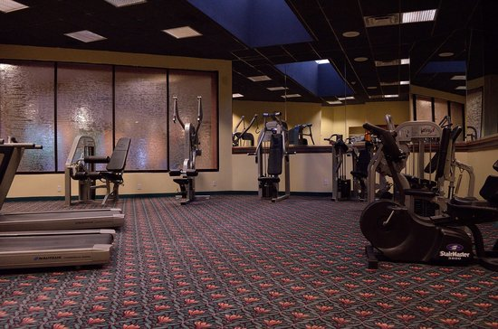 Holiday Inn Dallas-Richardson: Workout room