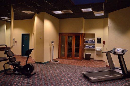 Holiday Inn Dallas-Richardson : Sauna and scale